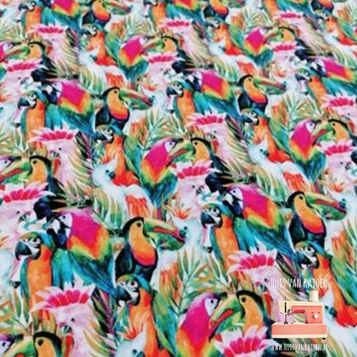 Jersey - Tropical birds